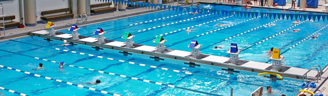 Olympic Swimming Pool Fina Standards Blue Fincne